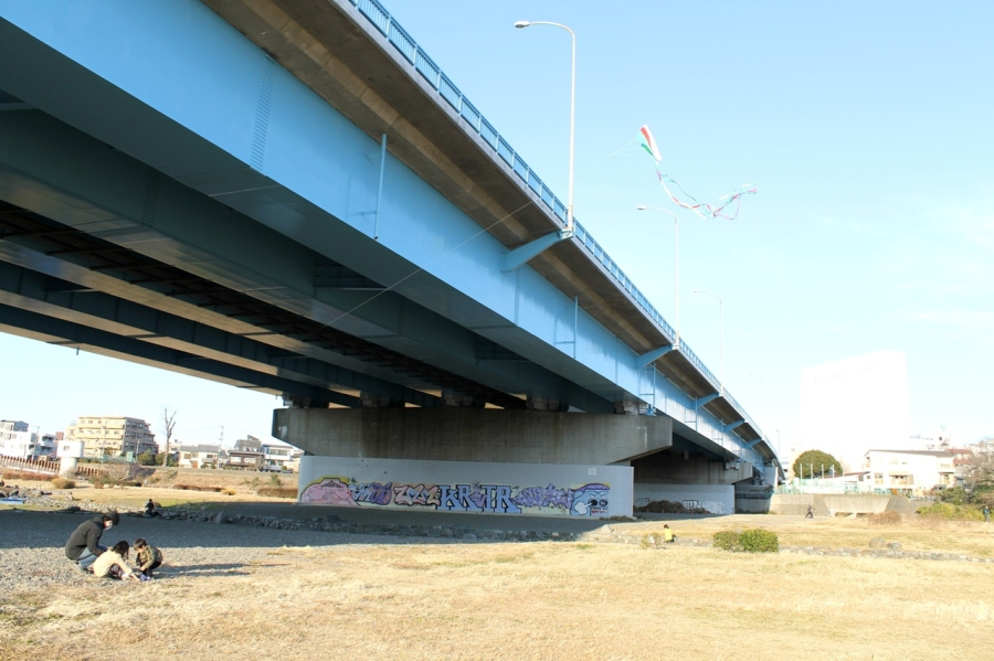 camera Dec-March 2012 034